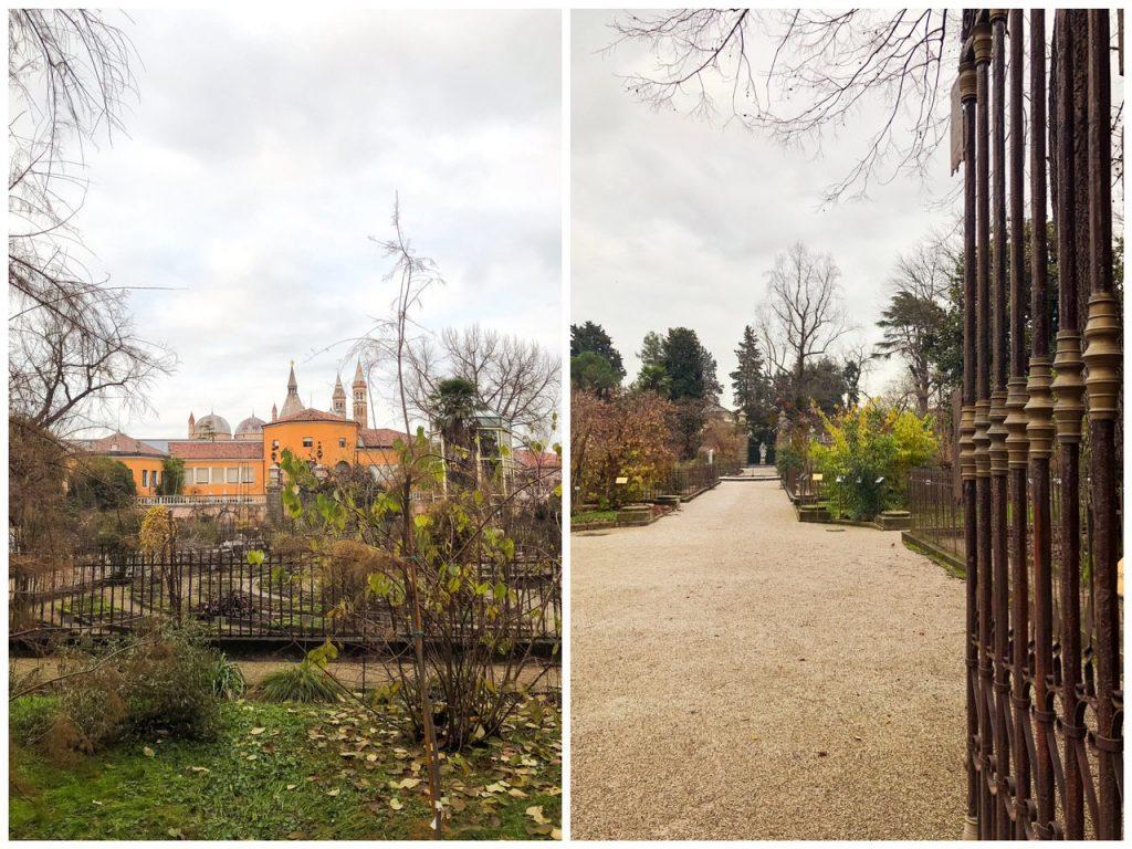 visuale sulla parte antica dell'orto botanico di padova